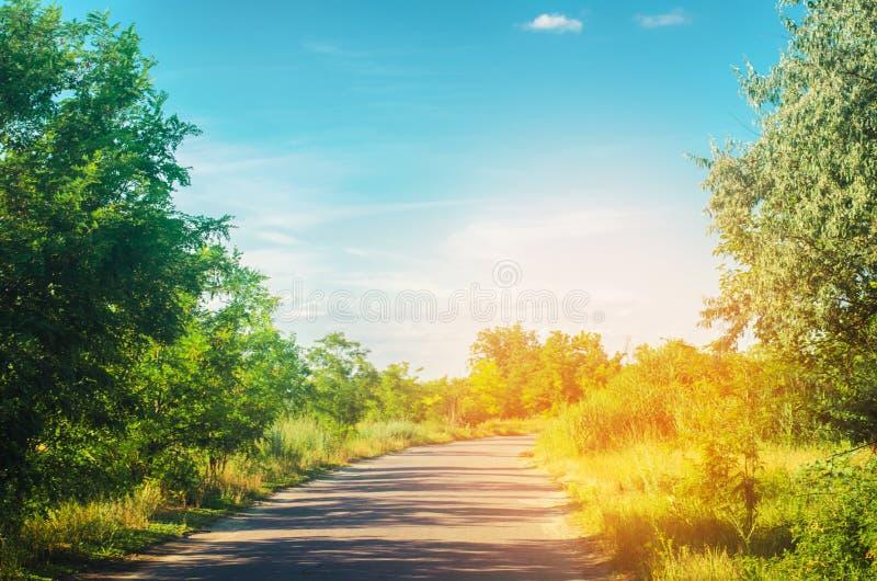 Een landweg met groene bomen en de blauwe hemel dichtbij het bos op een heldere de zomerdag Platteland nave Mooi landschap stock foto's