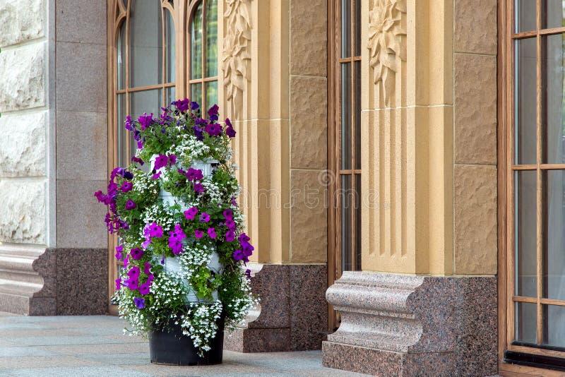 Een lange pot met verschillende bloemen met witte en purpere bloesems stock fotografie