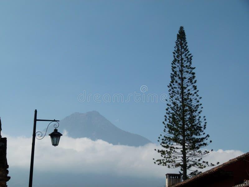Een lantaarn met vulkaan en araukaria royalty-vrije stock afbeeldingen
