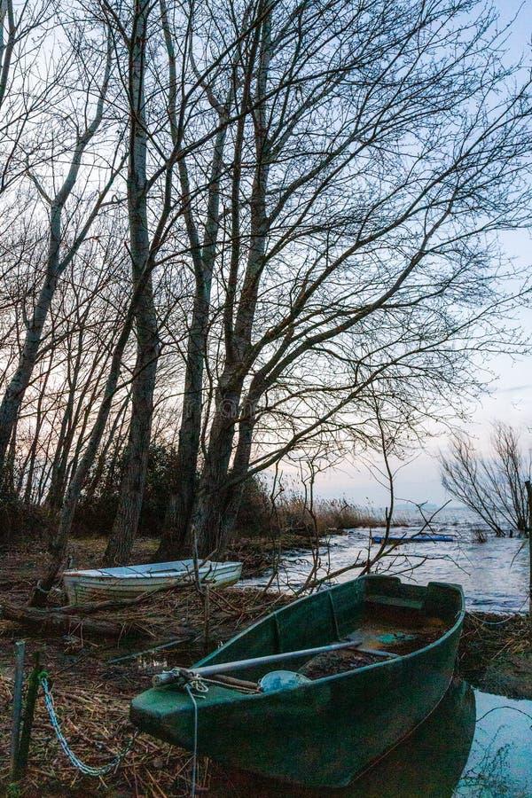 Een lege boot in het Umbrië-meer in Trasimeno, Italië, bij de schemering, vlakbij een skeletboom die een mooie textuur creëert me stock foto