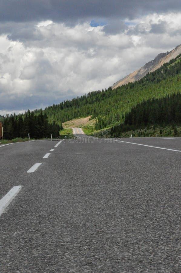 Een lege rijweg in Kananaskis-Land, de Provinciale Pa van Kananaskis stock fotografie