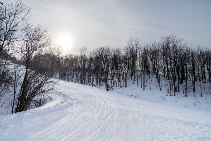 Een lege ski neemt naakte bomen door stock afbeeldingen