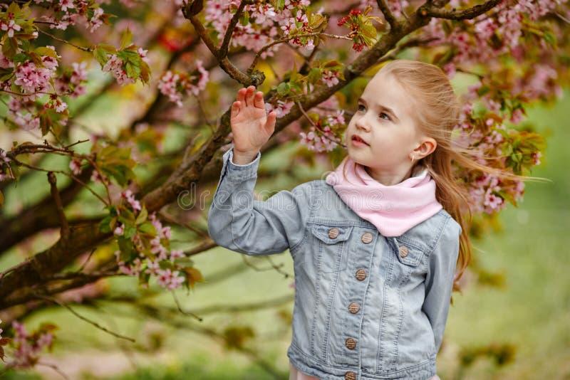 Een leuk blondemeisje bekijkt binnen de struiken van de kersenbloesem stock afbeelding