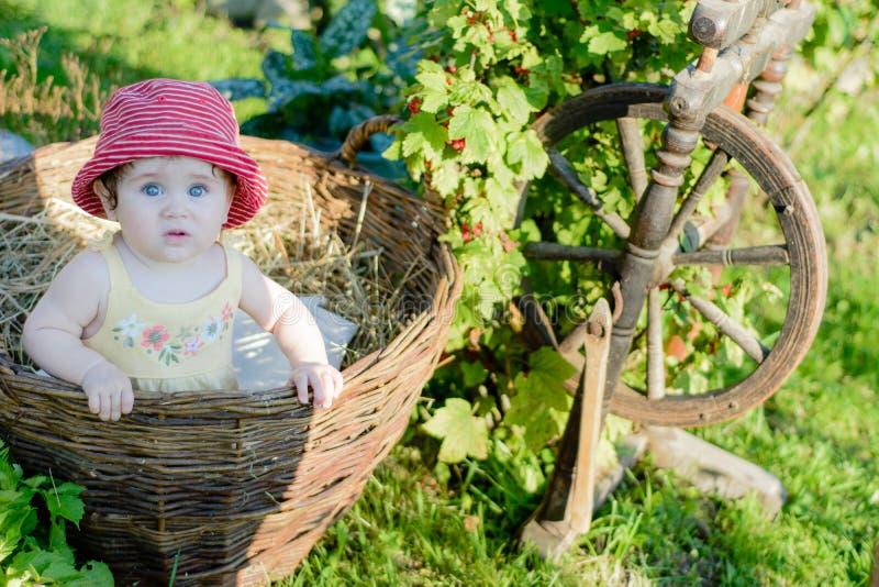 Een leuk meisje zit op een hooi in een mand in de tuin royalty-vrije stock foto