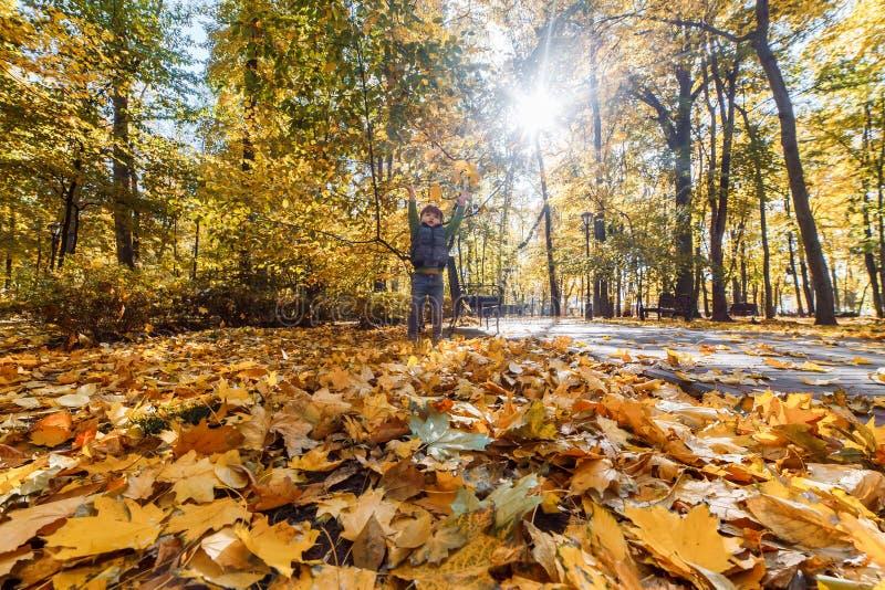 Een leuke kleine jongen die pret in het park in de herfst hebben stock afbeeldingen
