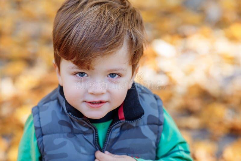 Een leuke kleine jongen die pret in het park in de herfst hebben royalty-vrije stock fotografie