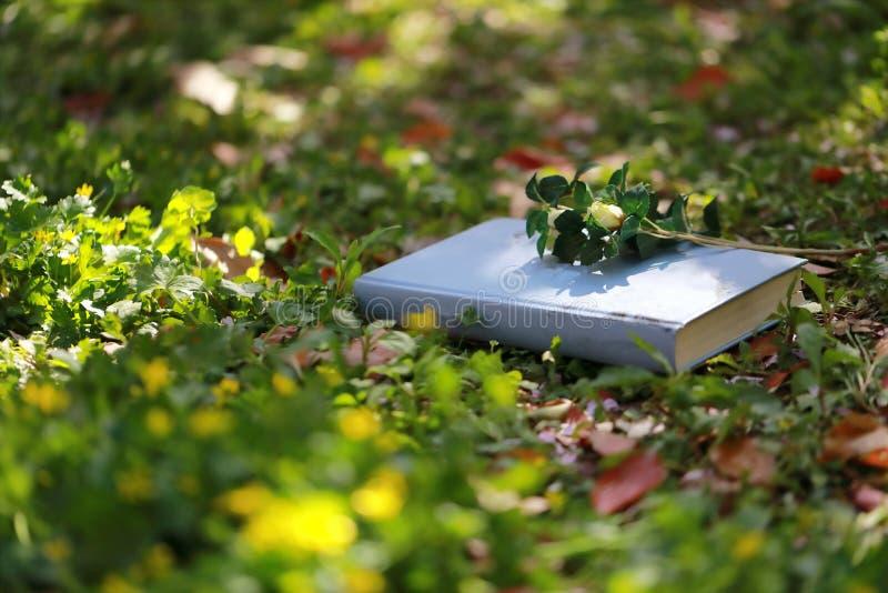 Een lichtblauw gesloten boek die op gras, een bos van bloem op boekdekking, in een srping tuin liggen royalty-vrije stock foto's