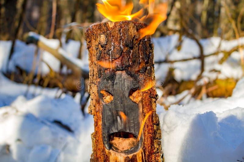 Een logboek met ogen en mond in de brand stock foto's