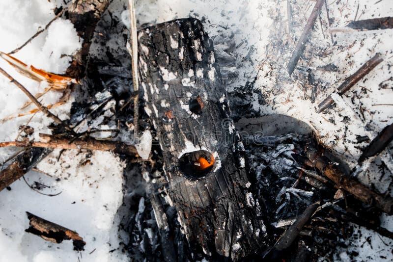 Een logboek met ogen en mond in de brand stock foto