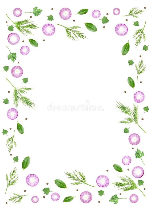 Een luchtfoto van kleurrijk die kader van verse purpere gesneden ui met de bladeren, de peterselie, de dille en de peperbollen va royalty-vrije illustratie
