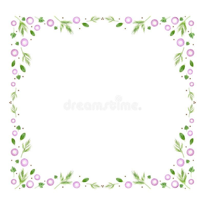 Een luchtfoto van kleurrijk vierkant die kader van verse purpere gesneden ui met de bladeren, de peterselie, de dille en de peper stock illustratie