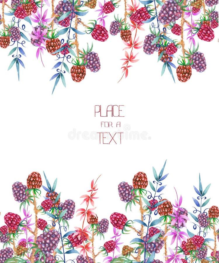 Een malplaatje van een prentbriefkaar, decoratieve plaats voor een tekst met de waterverf bos bloemenelementen: bessen en takken vector illustratie