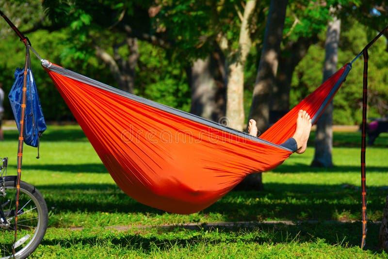 Een man die van de middag houdt en in zijn hammock in een park in St. Petersburg Florida aan het ontspannen is stock foto