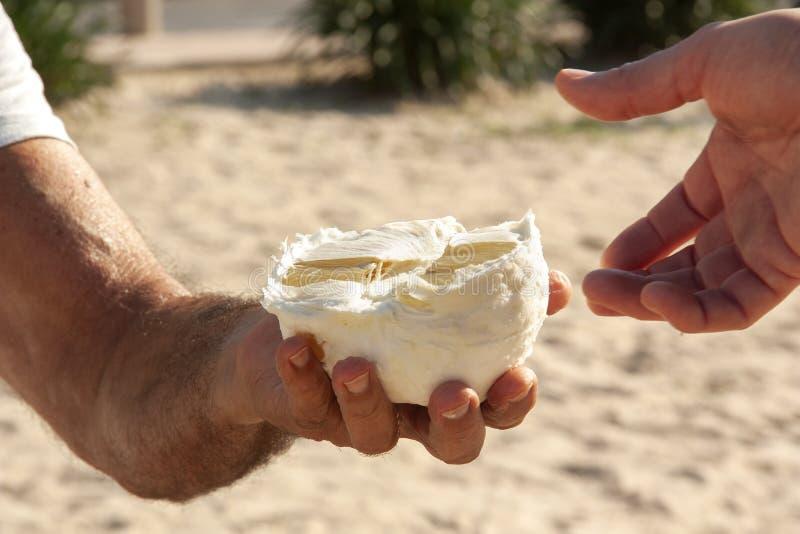 Een man hand houdt de helft van stand de pompelmoes stock afbeeldingen