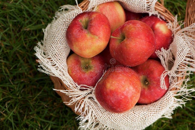 Een mand van appelen en peren op het groene gras royalty-vrije stock foto's