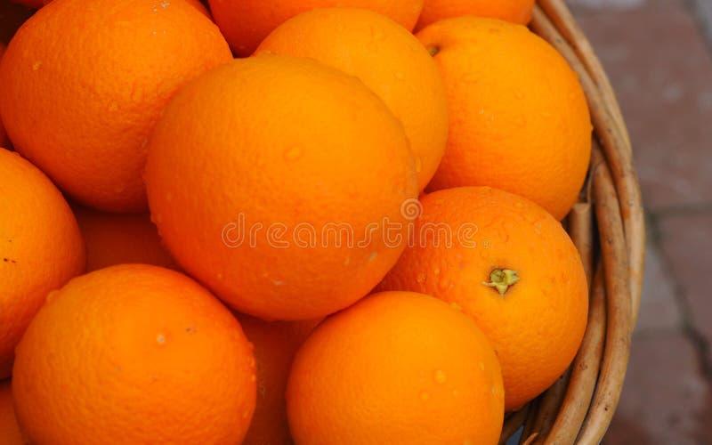 Een Mand van Verse Geplukte Rijpe Sappige Sinaasappelen royalty-vrije stock foto
