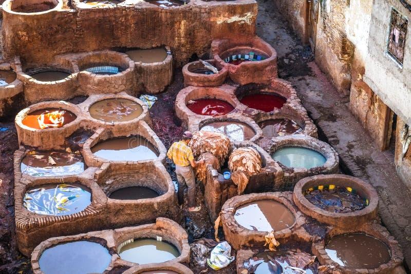 Een Marokkaanse mens die met dierlijke huiden in de leerlooierij werken Fez, Marokko royalty-vrije stock fotografie