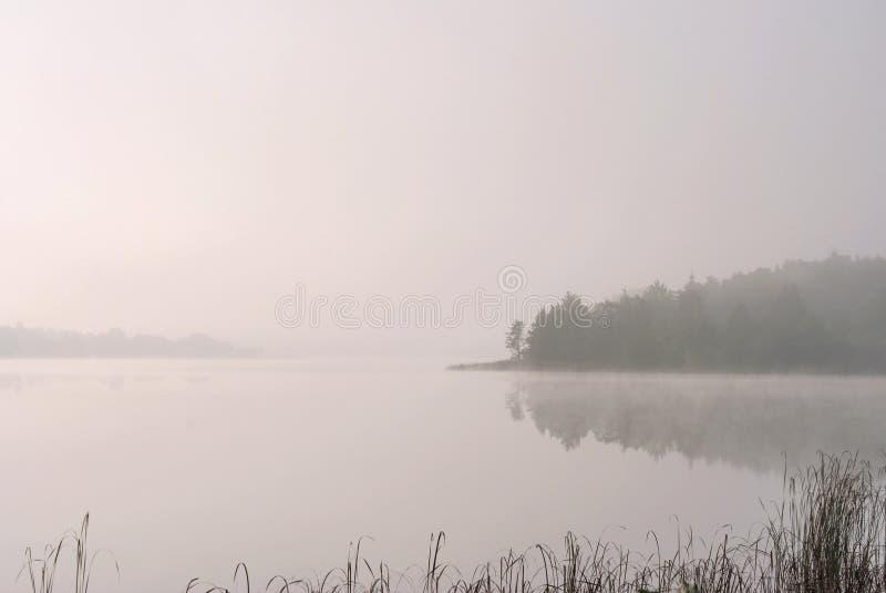 Een meer in het bos royalty-vrije stock fotografie