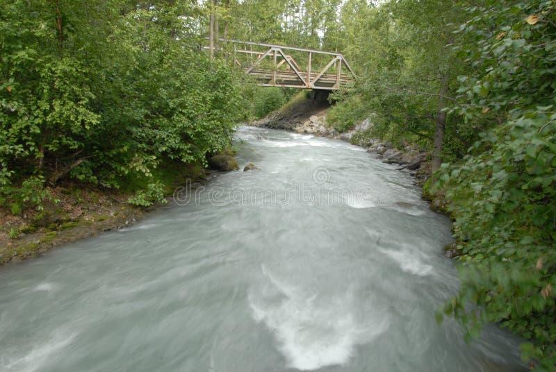 Een meeslepende rivier door de bomen stock fotografie