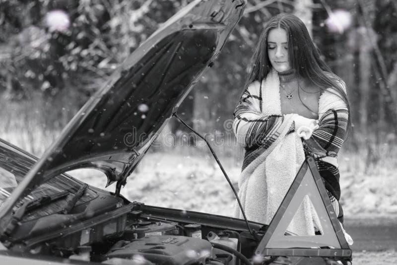 Een meisje in een de winter bewolkte dag royalty-vrije stock fotografie