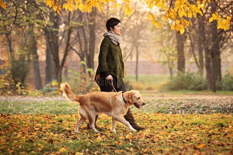Een meisje en haar hond die in een park in de herfst lopen royalty-vrije stock foto's
