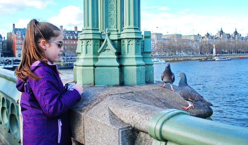 Een Meisje en Twee Duiven in Londen stock foto