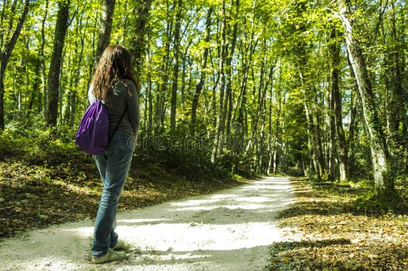 Een meisje in het Bos stock foto