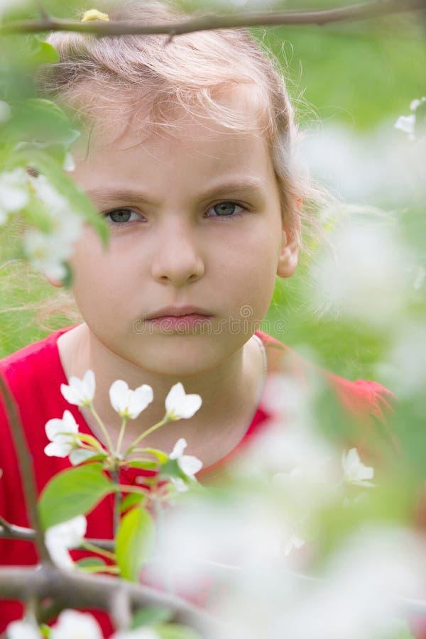 Een meisje met een ernstige blik. stock afbeelding