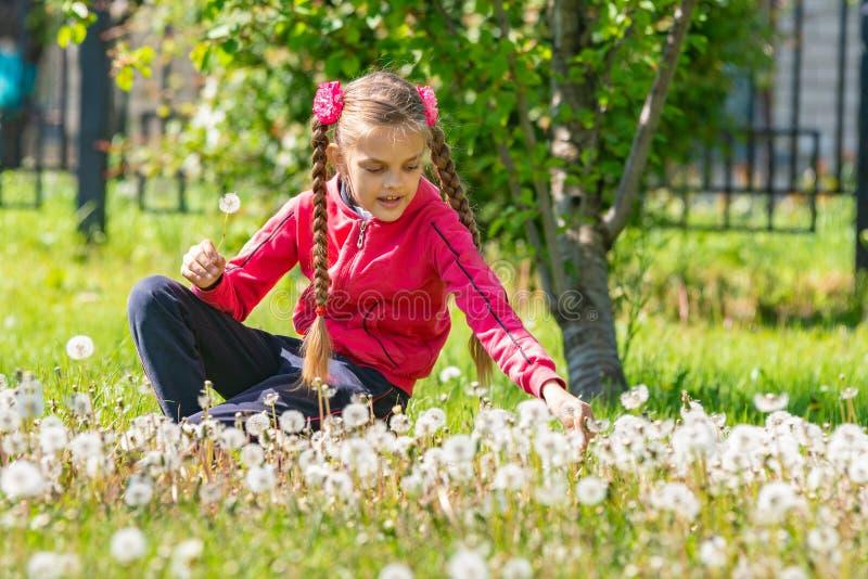 Een meisje van tien jaar verzamelt paardebloemen in het park stock afbeelding