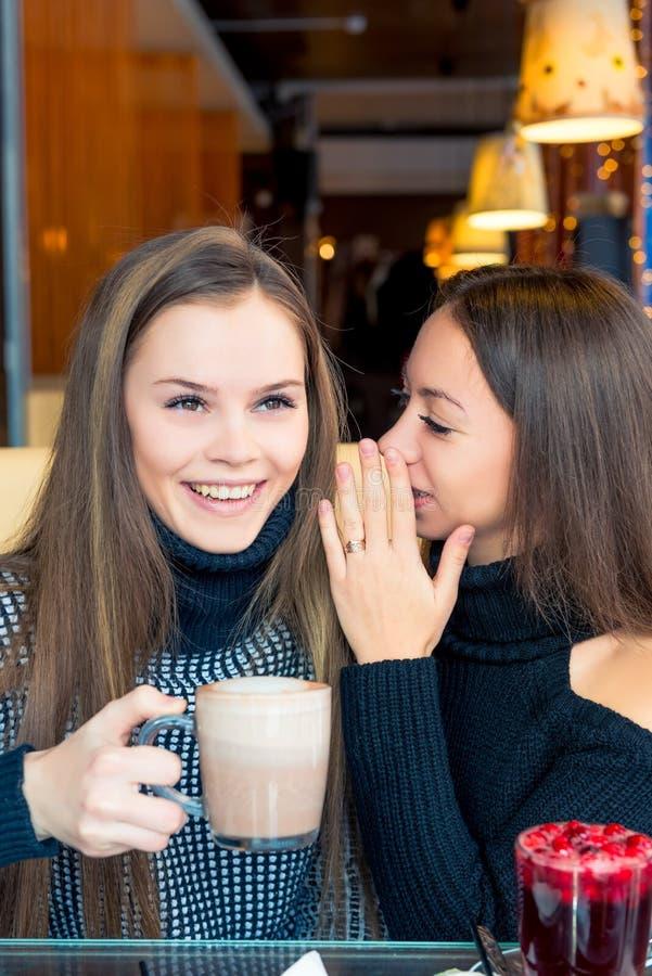 Een meisje vertelt haar vriend belangrijke geheimen stock foto