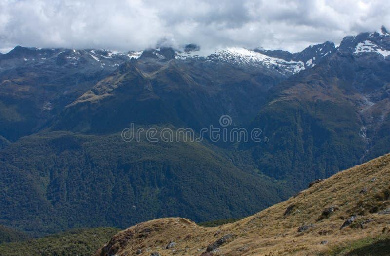 Een mening bij bergen van de Kegelheuvel in Harris Saddle bij de Grote Gang van Routeburn, Zuideneiland, Nieuw Zeeland royalty-vrije stock fotografie