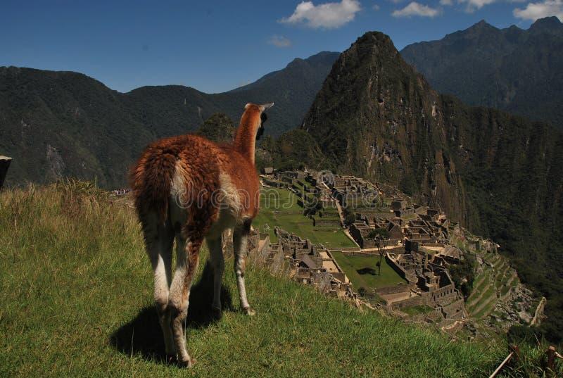 Een Mening over Machu Picchu stock foto's