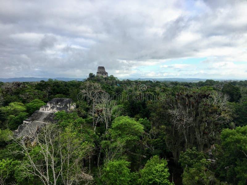 Een mening van de enorme dichte wildernis van het Nationale Park van Tikal buiten Flores, Guatemala, in Midden-Amerika royalty-vrije stock foto's