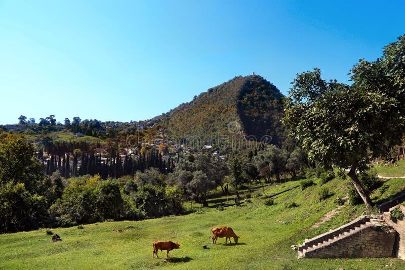 Een mening van de Iver-heuvel in Nieuwe Athos stock fotografie