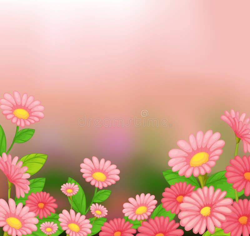 Een mening van de mooie roze bloemen royalty-vrije illustratie