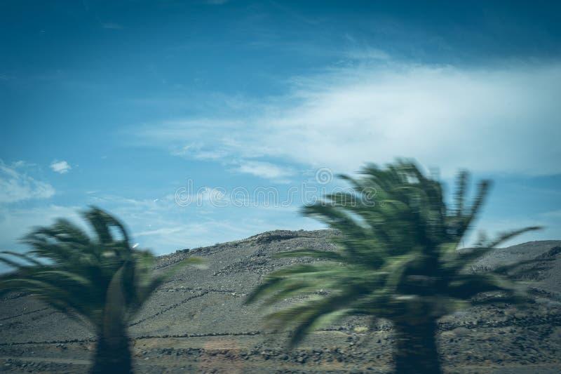Een mening van de Natuurlijke Reserve van Duinen van Maspalomas, in Gran Canaria, Canarische Eilanden, Spanje stock afbeelding