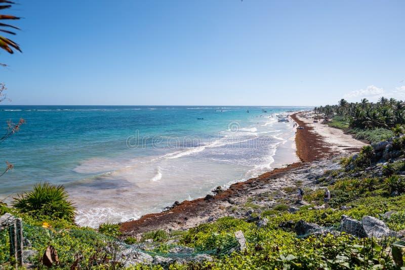 Een mening van het strand in Tulum, Mexico royalty-vrije stock fotografie