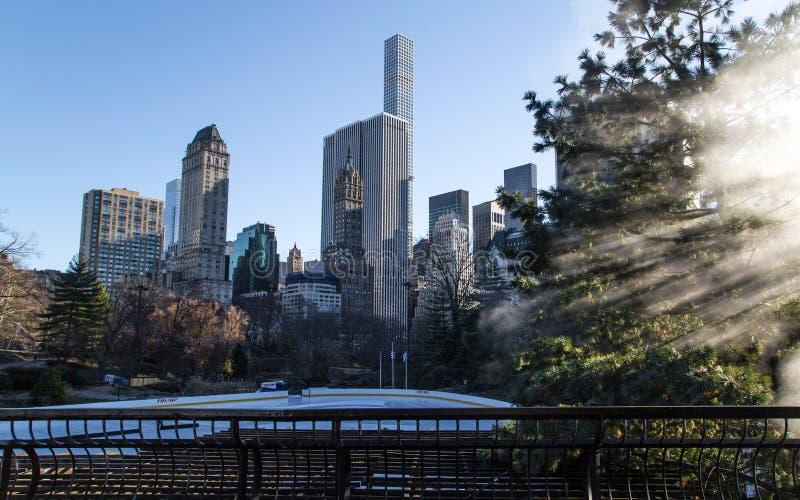 Een Mening van Manhattan over de ijsring in Zuidencentral park in Manhattan stock afbeelding