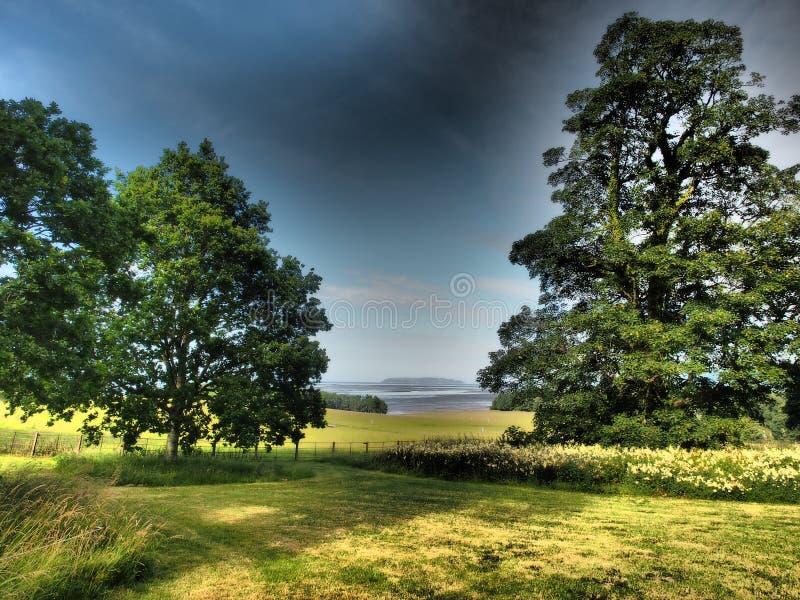 Een mening van een mooi park op het overzees in de achtergrondbomen en de wolken stock afbeeldingen