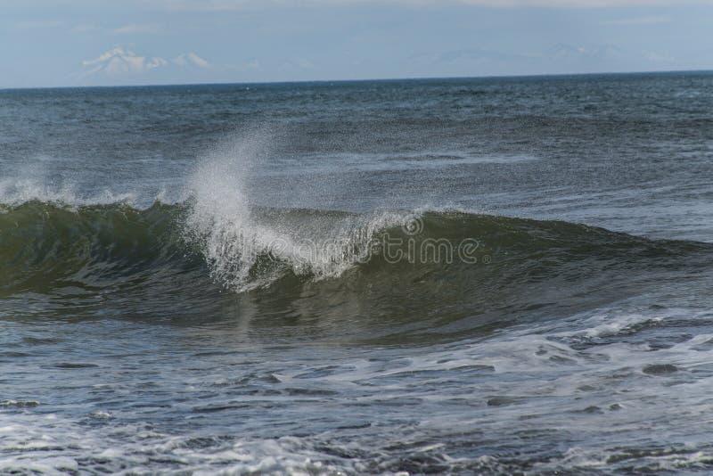 Een mening van een toneel blauwe oceaangolf royalty-vrije stock foto's