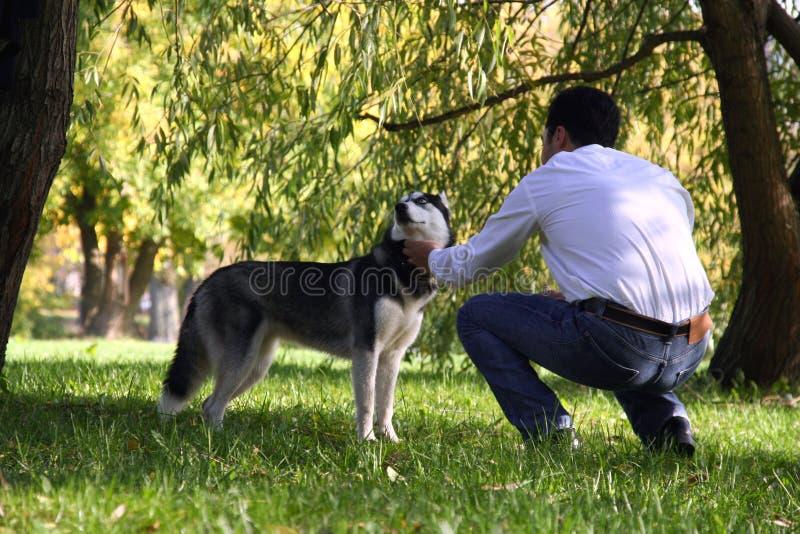 Een mens die een schor hond petting stock foto