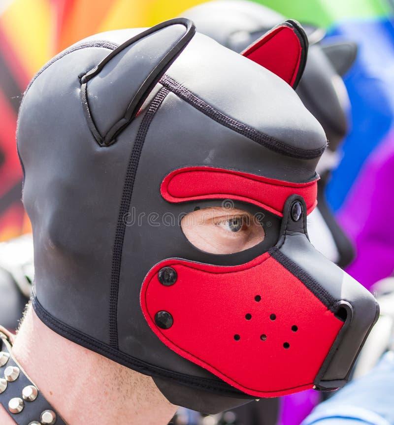2018: Een mens die het masker die van de leerhond dragen die de Gay Pride-parade bijwonen ook als Christopher Street Day-CDD in M royalty-vrije stock foto's