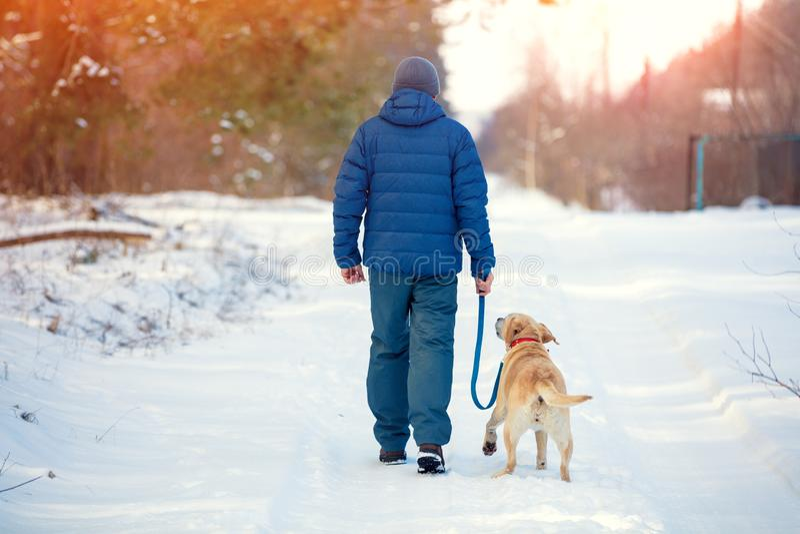 Een mens met de hond die langs een snow-covered weg lopen royalty-vrije stock afbeeldingen