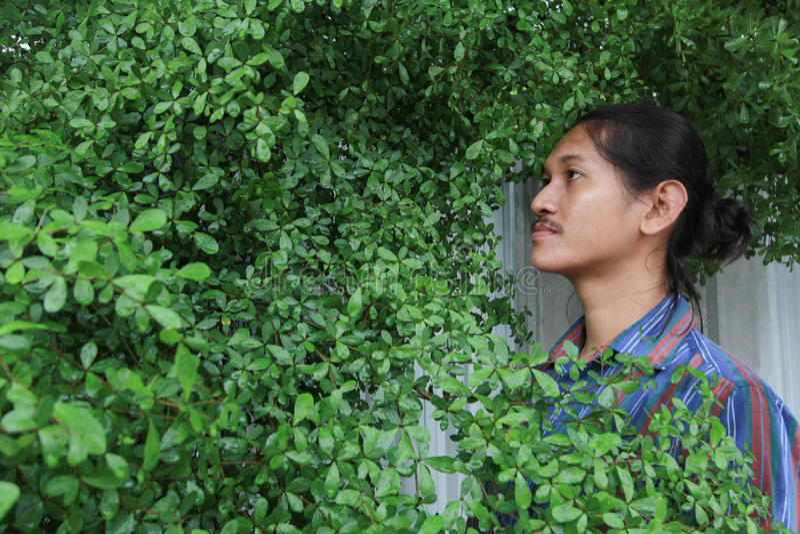 Een mens met een Lang haar en een snor die uit van bushe gluren stock foto's