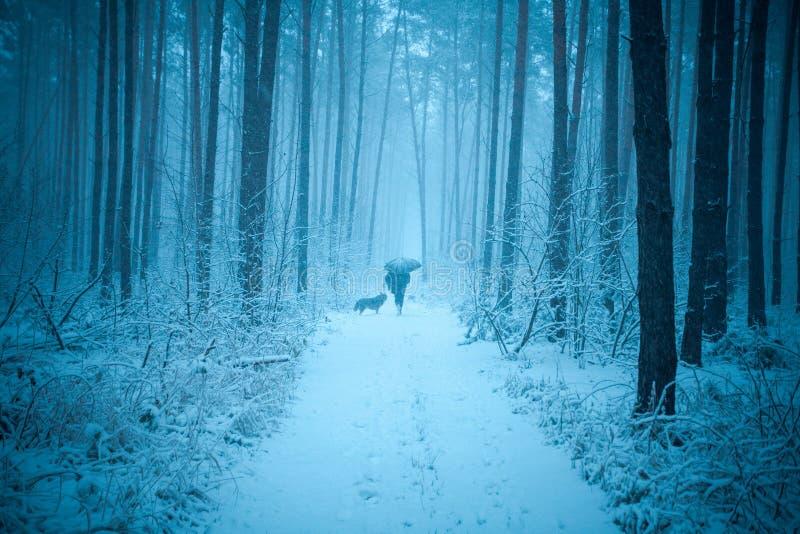 Een mens met een hond loopt in een de winterbos royalty-vrije stock foto