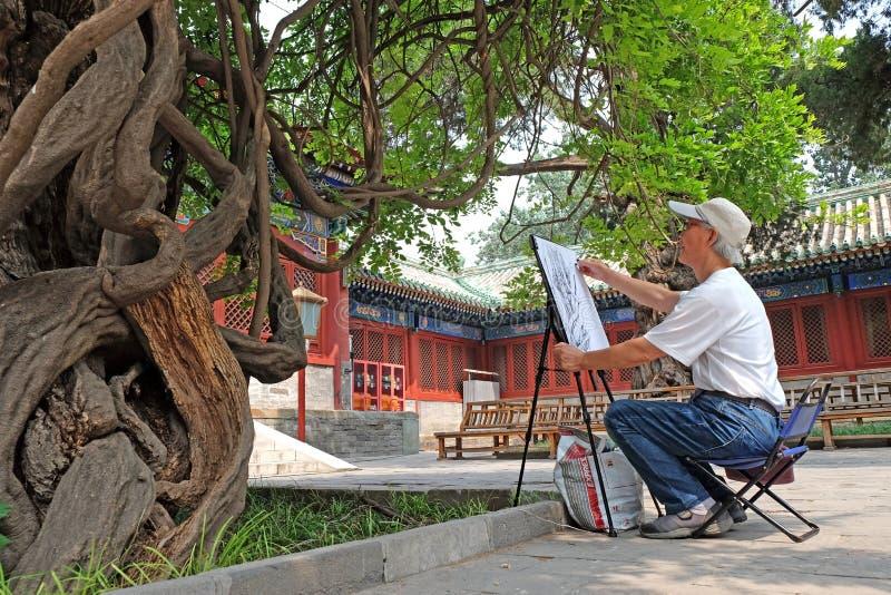 Een mens trekt een oude die boom wordt verondersteld om meer dan 300 jaar oud in de tempel van Confucius, Peking, China te zijn royalty-vrije stock foto