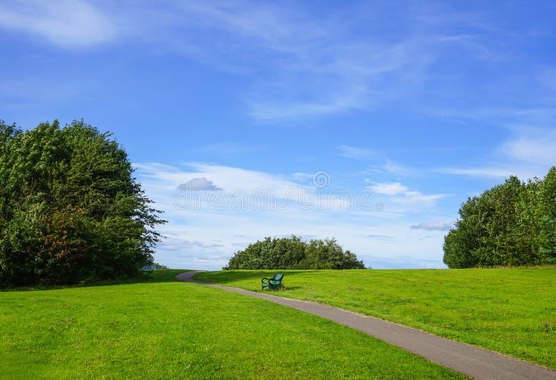 Een metaalbank in landschap van weide met groene boom en bewolkte blauwe hemel stock foto