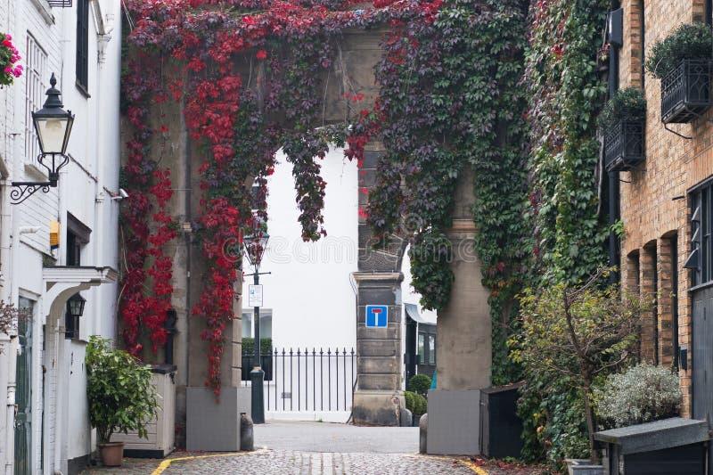 Een miauwenoverwelfde galerij in Londen met bladeren die in de herfst rood worden stock fotografie