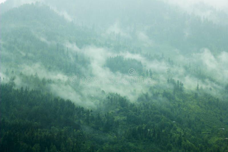 Een mist in de groene hellingsbergen royalty-vrije stock foto