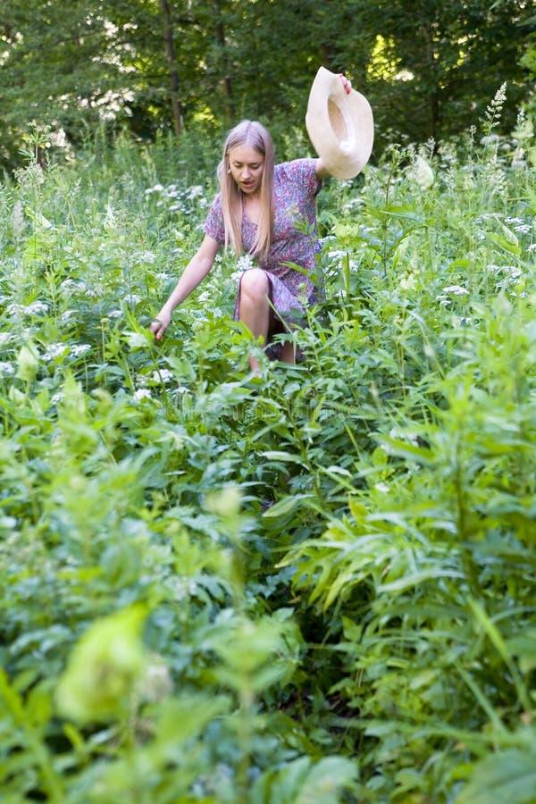 Een mooi blonde maakt haar manier door struikgewas van lang gras royalty-vrije stock fotografie